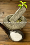 Steviaのエリトレットは粉のSteviaを混ぜる