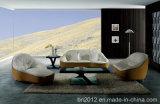Canapé en cuir véritable de salon (SBL-9007)