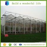 Полуфабрикат высокая конструкция здания гимнастики стальной структуры плоской крыши подъема