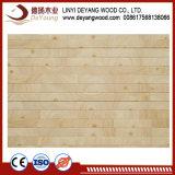Um grau de madeira maciça de pinho placa mista de dedo