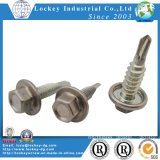 Tornillo de acero inoxidable Ss410 Hex Washer Head Tornillo autoperforante
