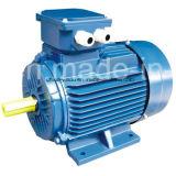 電気モーター鋳鉄の三相非同期誘導電動機