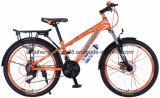 24-inch Steel Mountain Bike com velocidade 21