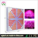 O LED do painel de crescer para luzes de LED de tenda luz crescer 14W 225 PCS LEDs azuis ou personalizar a cor vermelha