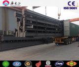 中国の鉄骨構造およびサンドイッチパネルのプロジェクトの工場(SS-091)