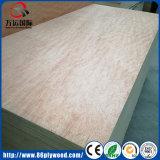 Madera contrachapada comercial de la venta de la chapa de madera caliente de Bintangor con Pirce barato