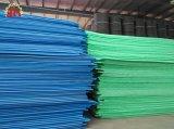 La Chine première planche de mousse EPE jetables en plastique de la machine de l'extrudeuse