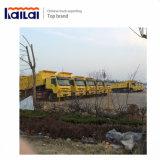 10 de Vrachtwagen van de Stortplaats van Sinotruk HOWO van de speculant