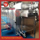 Fabrik-Großverkauf-Fische und Frucht-Riemen-trocknende Maschine