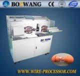 Máquina que corta y que elimina automatizada Bw-882dk-120 para el cable 120mm2