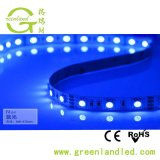 Ce chiaro RoHS di CC 24V della striscia LED di promozione 5m/Rolls SMD 5050