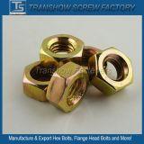 Colorer les noix DIN934 Hex galvanisées