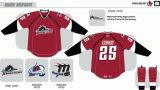 Customized Homens Mulheres Crianças Liga de Hóquei Americana Lago Erie Monsters 2007-2013 Hóquei no Gelo Jersey