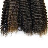 100%の人間の自然なブラジルのバージンの毛の拡張ねじれたカーリーヘアーの織り方Lbh 129