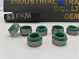 Auto Vervangstukken van RubberProduct van de Verbinding van FKM /NBR het Rubber