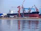 DDU/DDP de Levering van de lading van de Havens van China aan Puerto Caldera/Puerto Limon/San Jose/Heredia/Moin