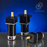High Torque a bajas revoluciones de baja potencia de motor DC eléctrico pequeño -E