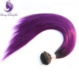 1b/Purple 2 음색 Ombre 색깔 인간적인 Remy 머리 길쌈
