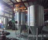 1hl、4hl、5hl、6hl、8hlの10hl Beerfermentationタンク(ACE-FJG-2C)