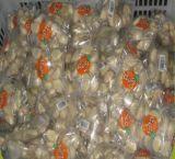 도매 신선한 재고 유효 기간 거피된 마늘