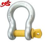 Wir Typ Fessel-Schraubepin-Anker-Fesseln G209