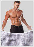 Sicherer Natural Stimulant 99% Neo Synpehrine HCl für Weight Loss