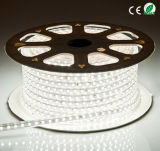 Bande LED Flexible haute tension de l'éclairage LED 5050/5630/3528 Strip Light