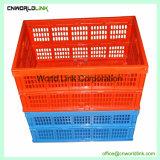 La caja plegable de plástico de diversos centros comerciales en venta