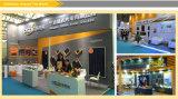panneau solaire approuvé de 300W TUV/CE poly pour le marché global
