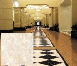 Взгляд плиток фарфора Terracotta поливы Кита как мрамор