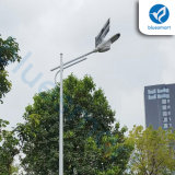 Luz solar integrada del jardín lumen fácil LED de la instalación del alto