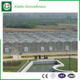 농업 설치를 위한 다중 경간 PC 장 녹색 집