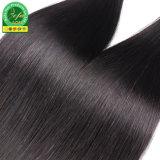 バージンの人間の毛髪のよこ糸のための最もよい品質そして最もよい価格