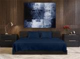 固体ブラシをかけられたMicrofiberのホーム寝具の敷布セット