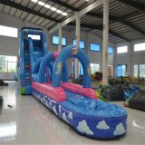 Aoqi Design Inflatable Water Big Slide (aq1036-1)