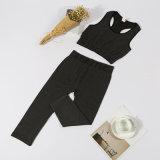 Йога установленное Yjf10301010 повелительниц пригодности Sportwear дешевых женщин OEM установленная