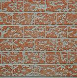Panneau de mur extérieur de décoration d'isolation