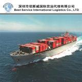 Контейнер для перевозок, товароотправитель перевозки, консолидация, перевозка груза океана (FCL 20 '' 40 '')