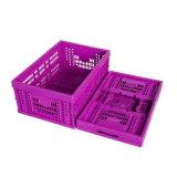 저장 사용을%s 뚜껑을%s 가진 배출된 Foldable 플라스틱 상자