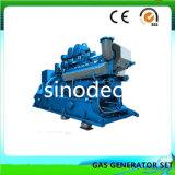 Biogás pequeña potencia motor generador de gas de 260kg.