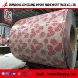 Prepainted оцинкованного стального листа/стали с полимерным покрытием катушка/веяние PPGI /Ppcr/PPGL производителя для Шри-Ланка