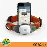 Mini capteurs de suivi GPS imperméables pour chiens Suivi GPS avec Google Map