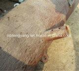 鋼鉄によって電流を通されるごまかされたやし松の木タワー