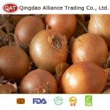 Свежие высококачественные желтый Pearl лук