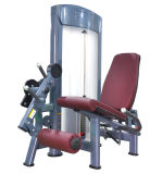 Extensión de pierna ejercicios de estiramiento
