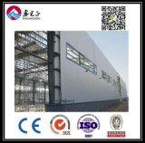 Подгонянный высоким качеством пакгауз стальной структуры (BYSS026)