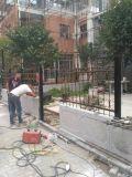 Rete fissa tubolare d'acciaio del giardino di obbligazione poco costosa della Cina