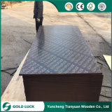 Construction film Faced Plywood/navy Plywood (Poplar, combi, Birch core)