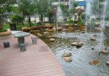 Plancher imperméable à l'eau extérieur de /Garden WPC de Decking de WPC