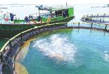 Cage de pêche de HDPE/PE/cage de flottement de poissons en mer profonde